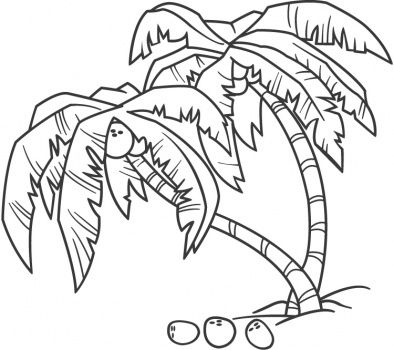 394x350 Palm Tree Coloring Pages Coconut Palm Coloring Page