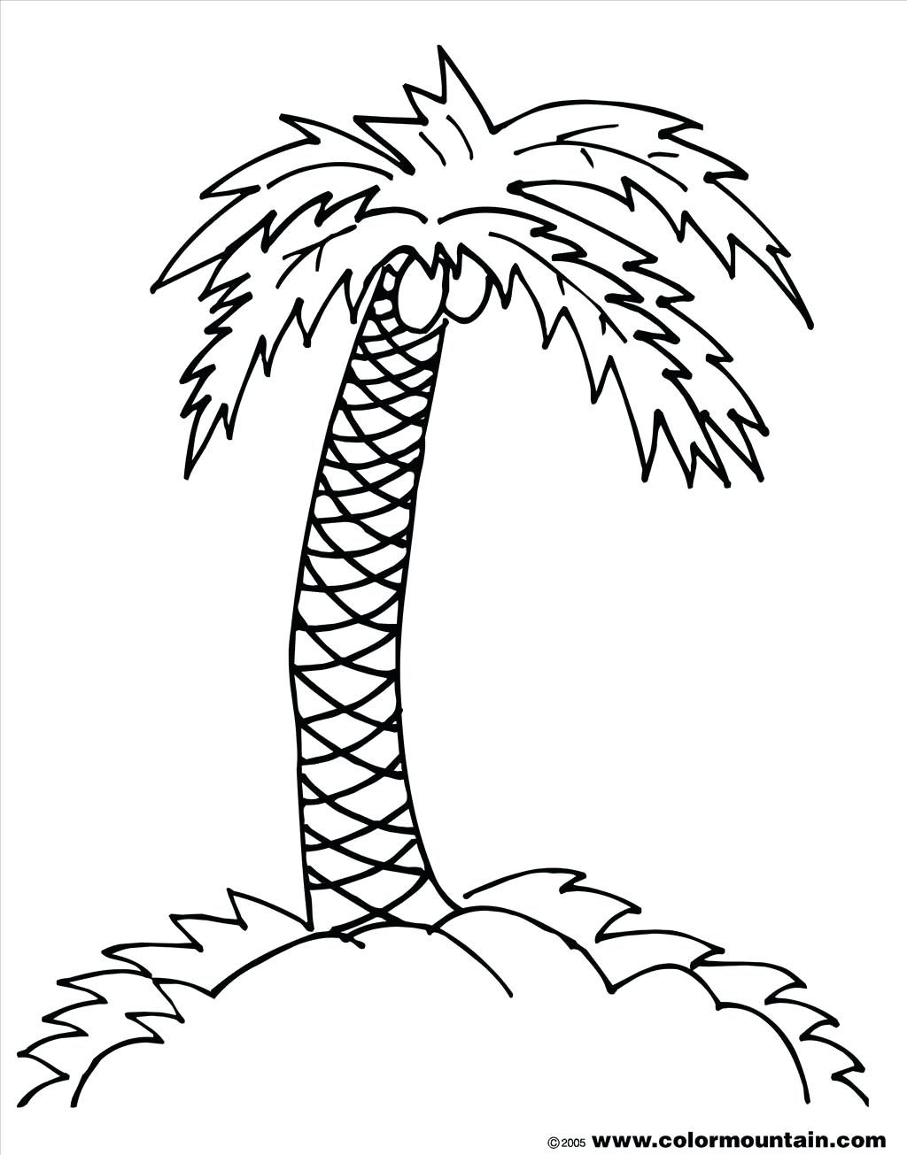 1024x1305 Coloring Page Trees Coloring Pages Good Palm Tree Photograph