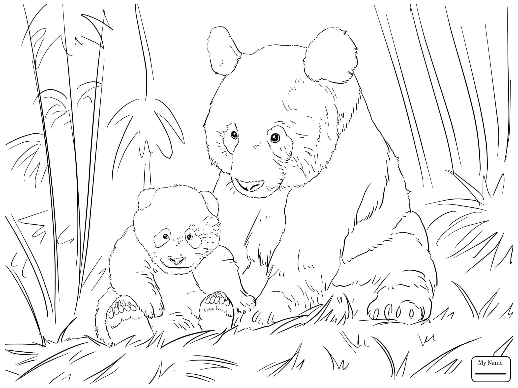 2089x1567 Panda Bear Coloring Pages Panda Bear Coloring Pages Printable
