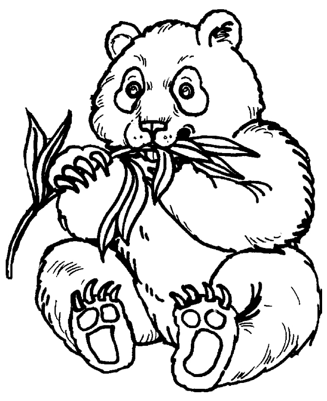 670x820 Panda Coloring Pages Luxury Panda Coloring Pages To Print Az