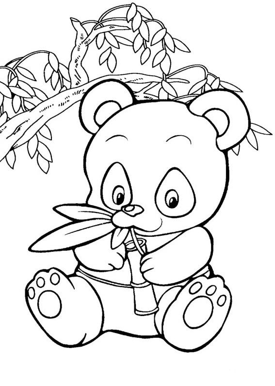 567x794 Free Coloring Pages Panda