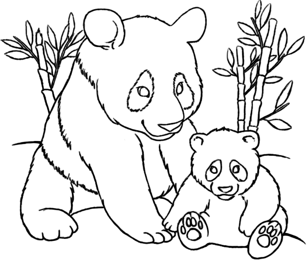 Panda Coloring Pages At Getdrawings Free Download