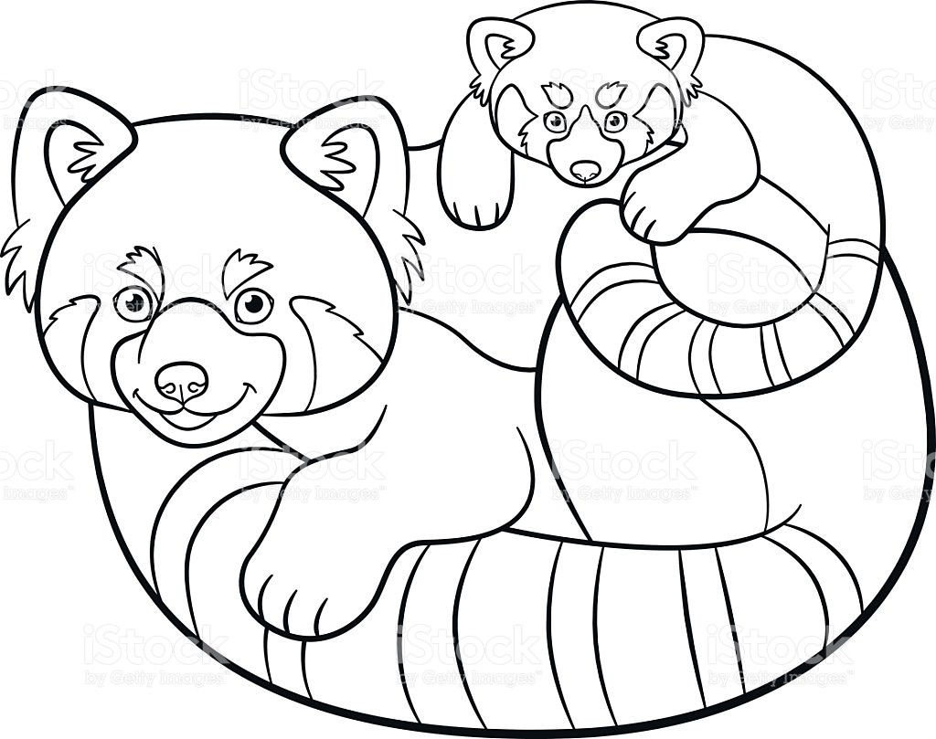 1024x809 Coloring Pages Red Panda Copy Red Panda Coloring Page