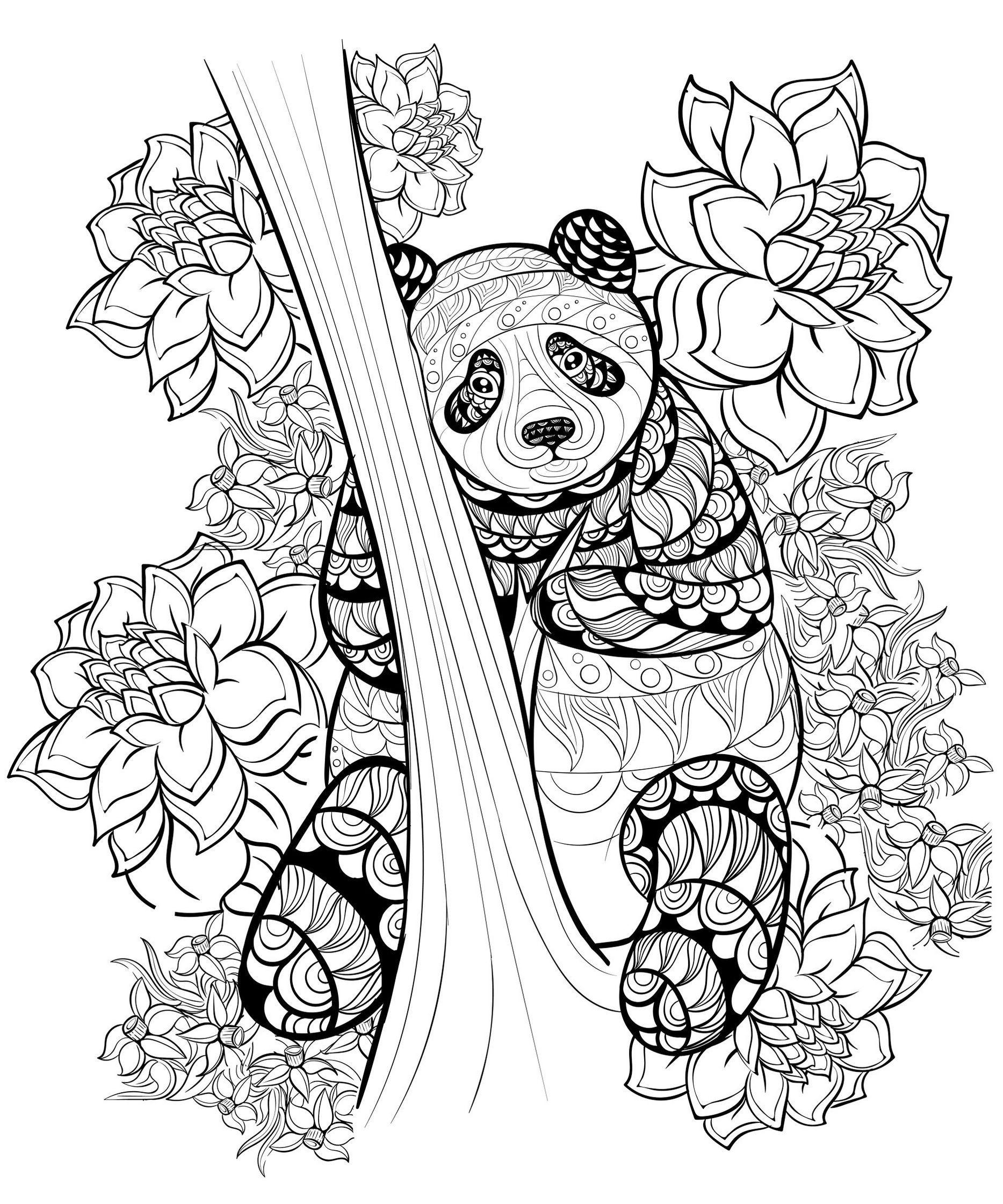 1867x2240 Zentangle Panda Coloring Sheet Printable Coloring Panda