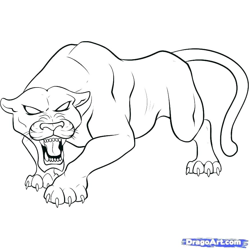 871x871 Black Coloring Pages Pink Panther Coloring Pages Panther Coloring