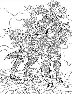 Papillon Dog Coloring Pages