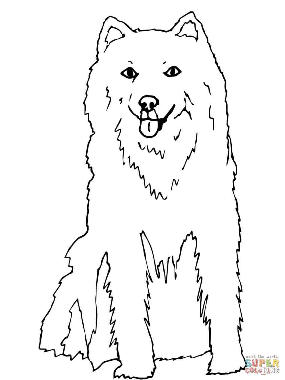 948x1264 Husky Dog Coloring Sheets Online Coloring Printable