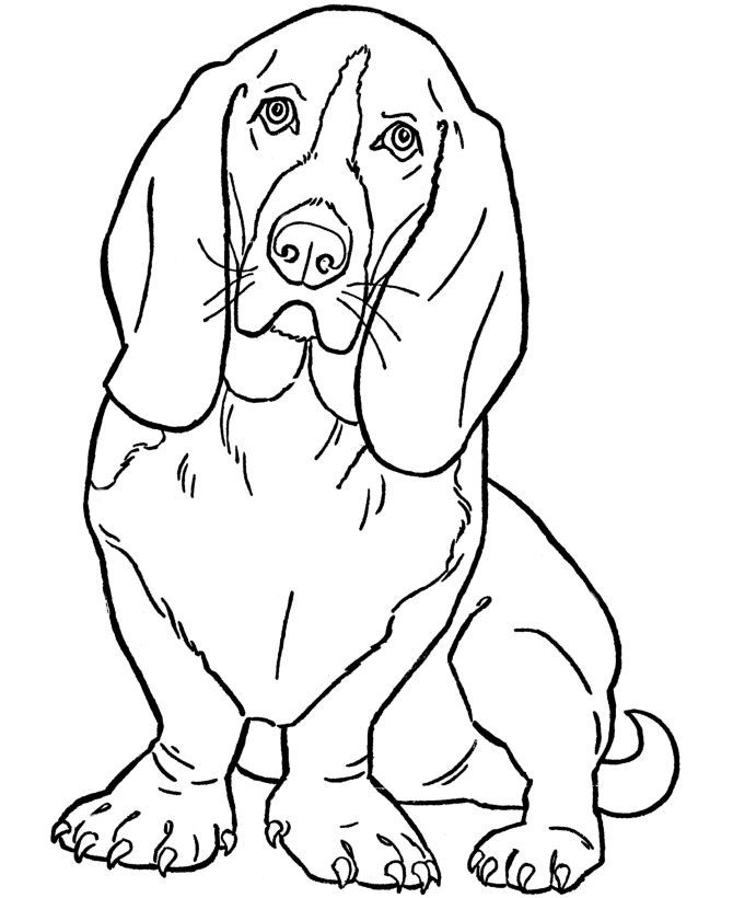 670x820 Dog Color Pages Printable Dog Coloring Pages Printable Basset