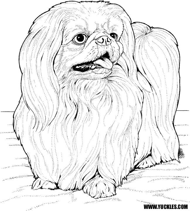 649x720 Best Dogs Images On Coloring Books, Coloring Pages