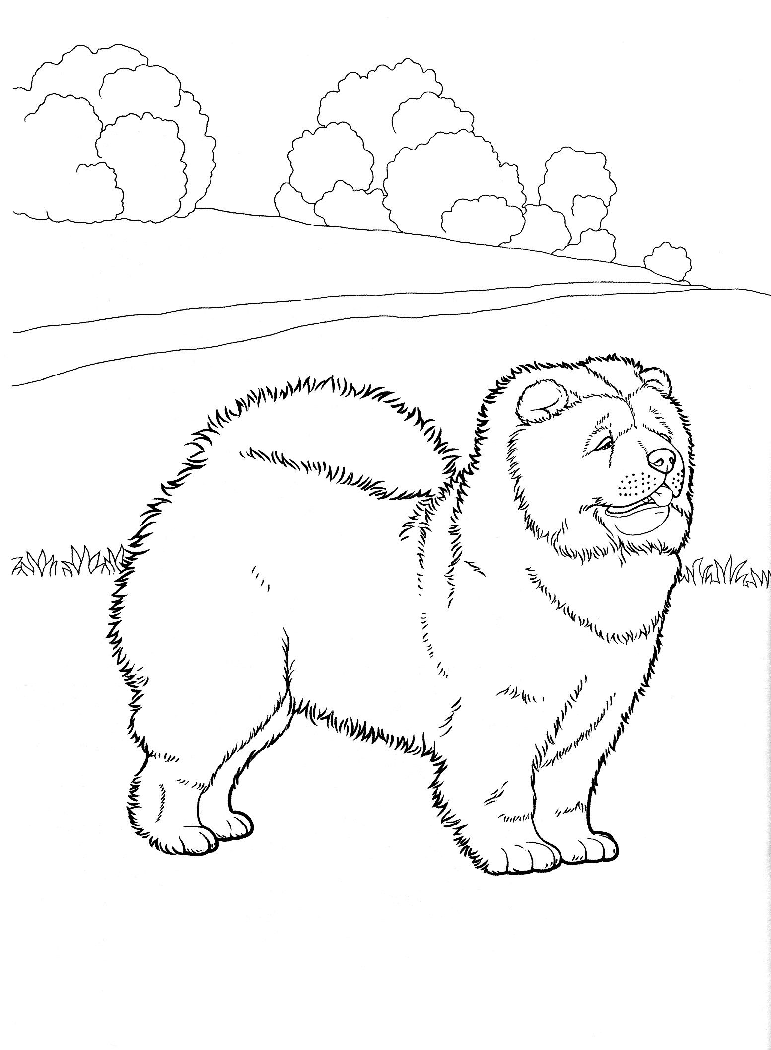 1553x2114 Dog Coloring Pages Teenagers Coloring Pages Woodburning Ideas