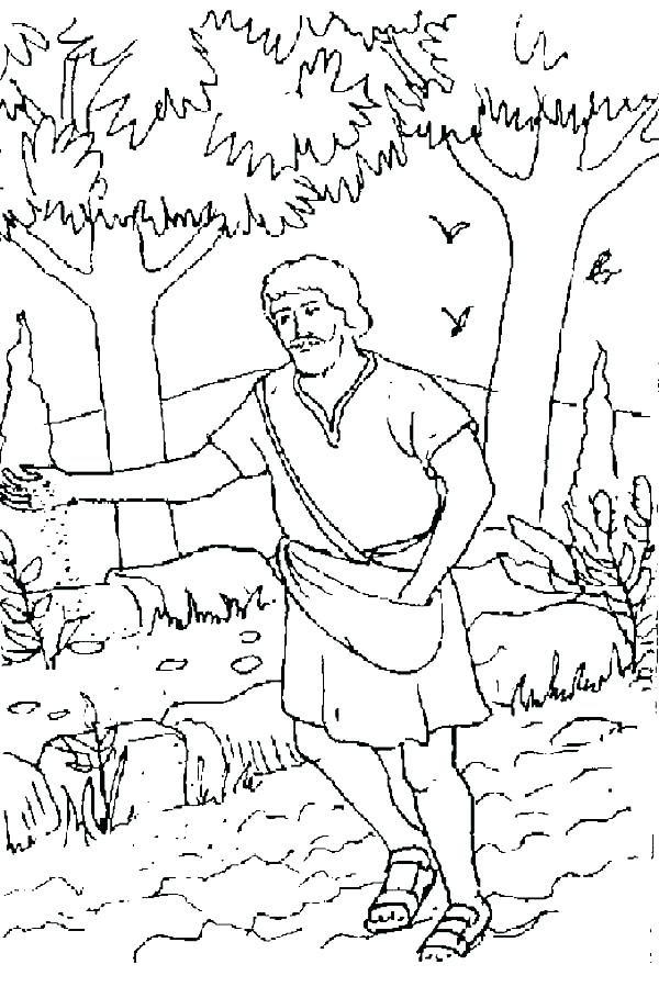 600x899 Mustard Seed Colouring Pages Parable Of The Mustard Seed Coloring