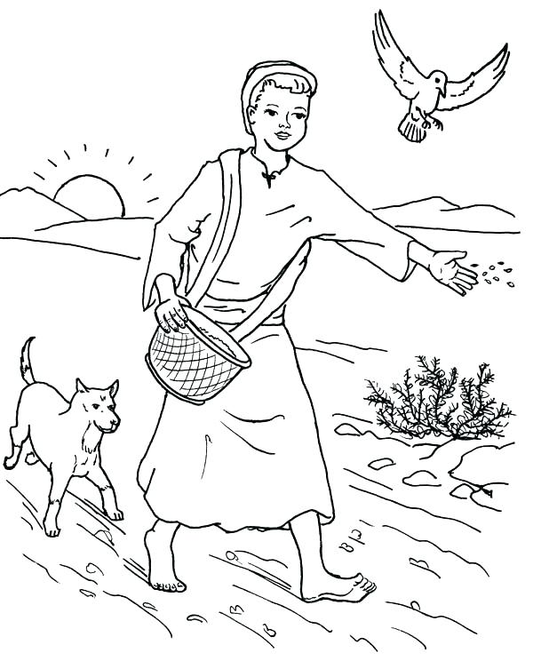 600x744 Mustard Seed Parable Coloring Page