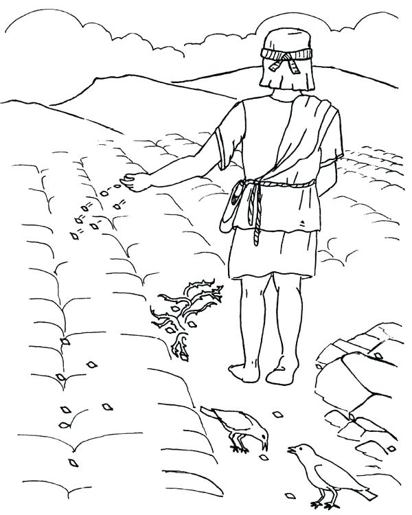 600x750 Parable Of The Sower Coloring Page Good Ground Where Seed Was