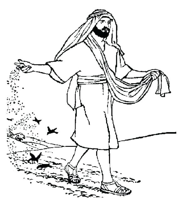 594x690 Parable Of The Sower Coloring Page Seeds Sower Sower And Seed