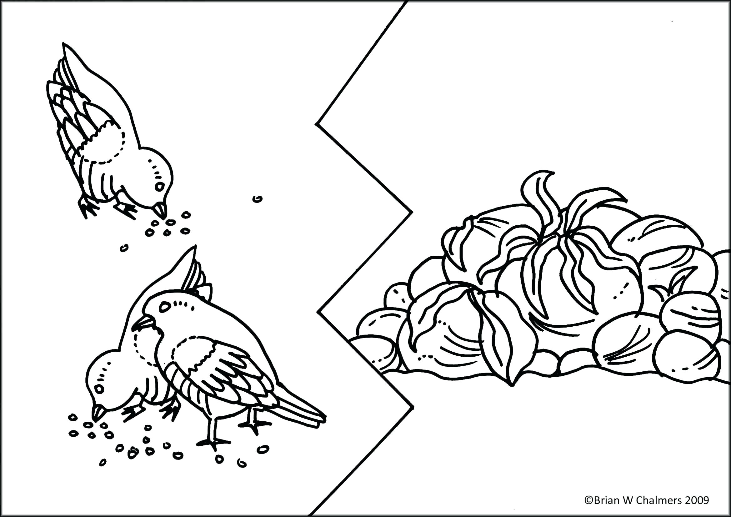 2339x1654 Coloring Pages Christmas For Adults Good Page Bible Depiction