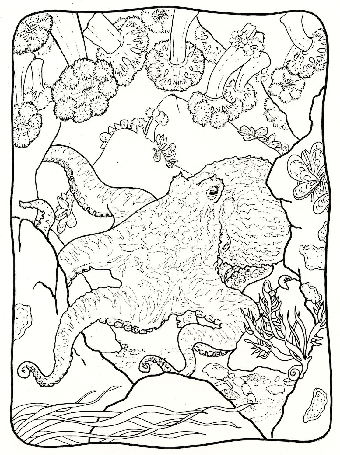 1117x1496 Coloring Pages To Print
