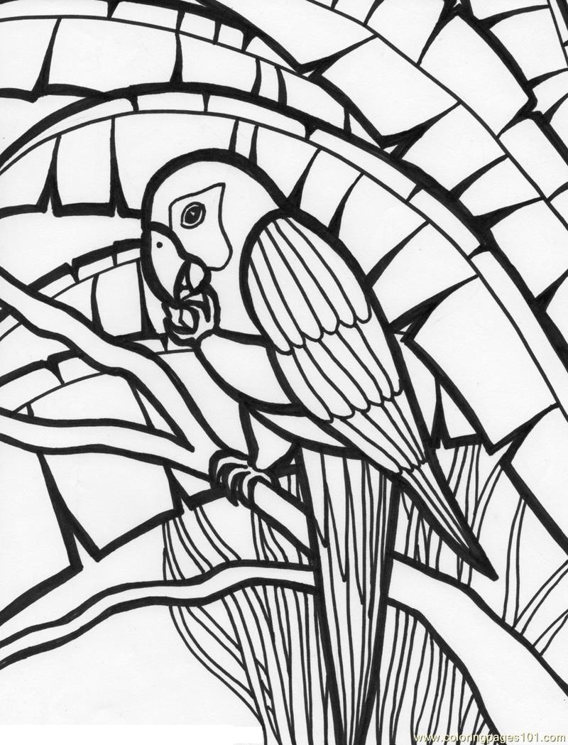 800x1049 Parrot Coloring Page