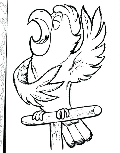 482x616 Parrot Coloring Pages Pirates Coloring Pages Parrot Coloring Page