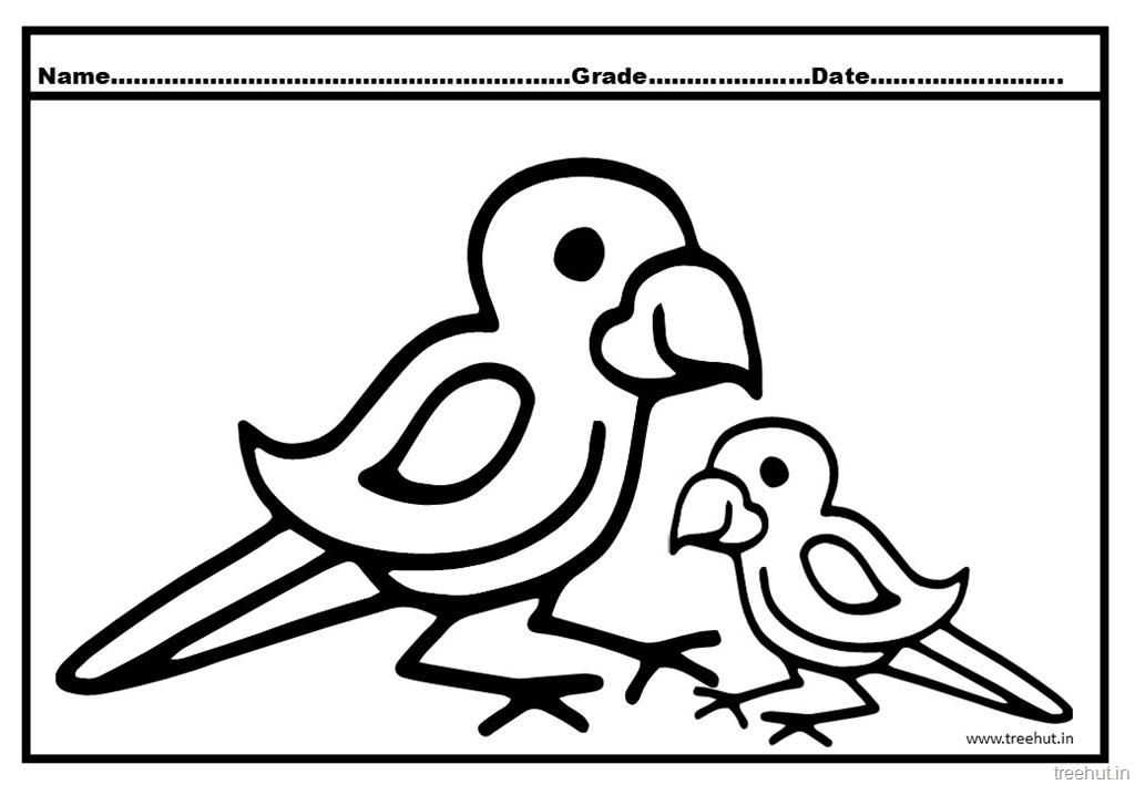 1024x709 Parrot Coloring Pages