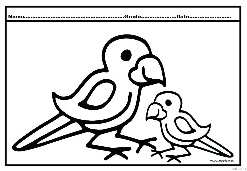 1024x709 Parrot Coloring Sheet Food Coloring Pages To Print Coloring Pages