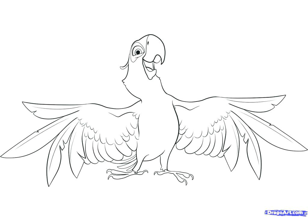 1024x723 Parrot Fish Coloring Page Pages Parrots On Brunch Birds Free