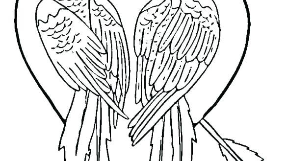 585x329 Parrots Coloring Pages Colouring Pages Ots Ot Picture To Color