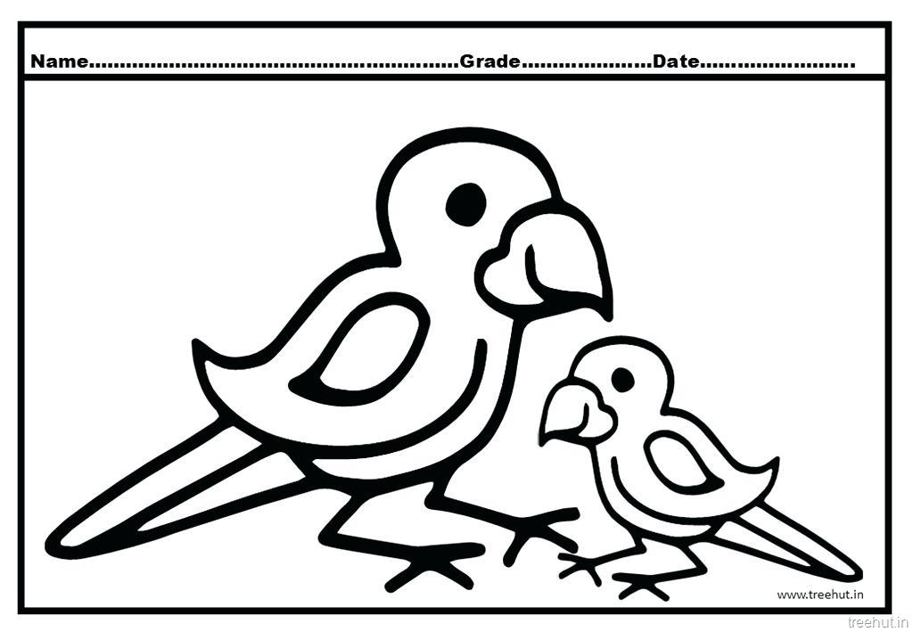 1024x709 Parrots Coloring Pages Parrot Fish Colouring Pages