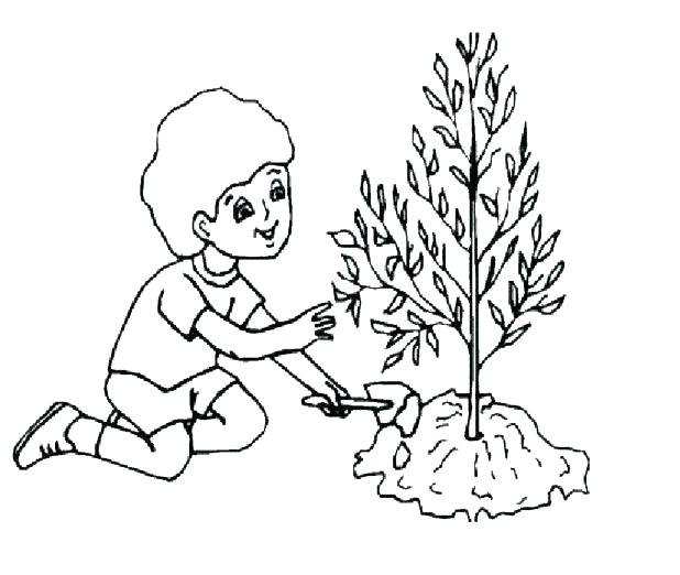 618x522 Parts Of A Flower Coloring Page Cell Coloring Page Earth Day