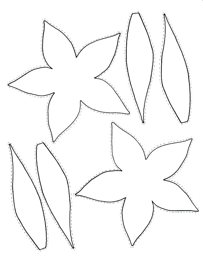 700x906 Parts A Plant Coloring Page This Is A Page Printable Parts
