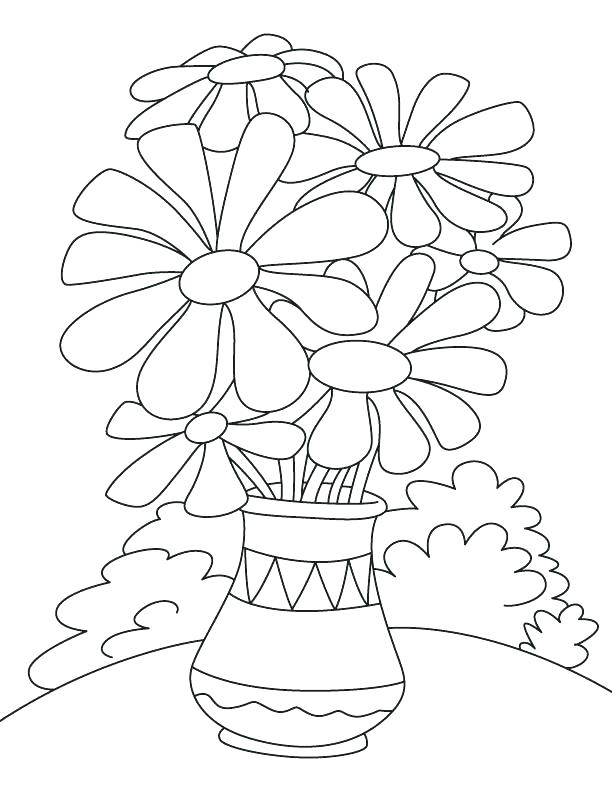 612x792 Parts Of The Plant You Can Eat Coloring Page In The Download This