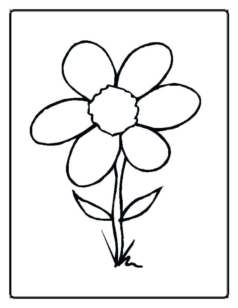 772x999 Plant Coloring Pages Drawn Jungle Plants Coloring Sheet Free Plant