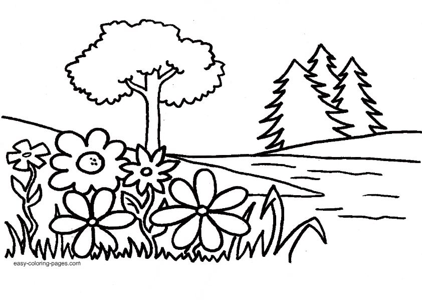 842x598 Plant Coloring Pages For Kids