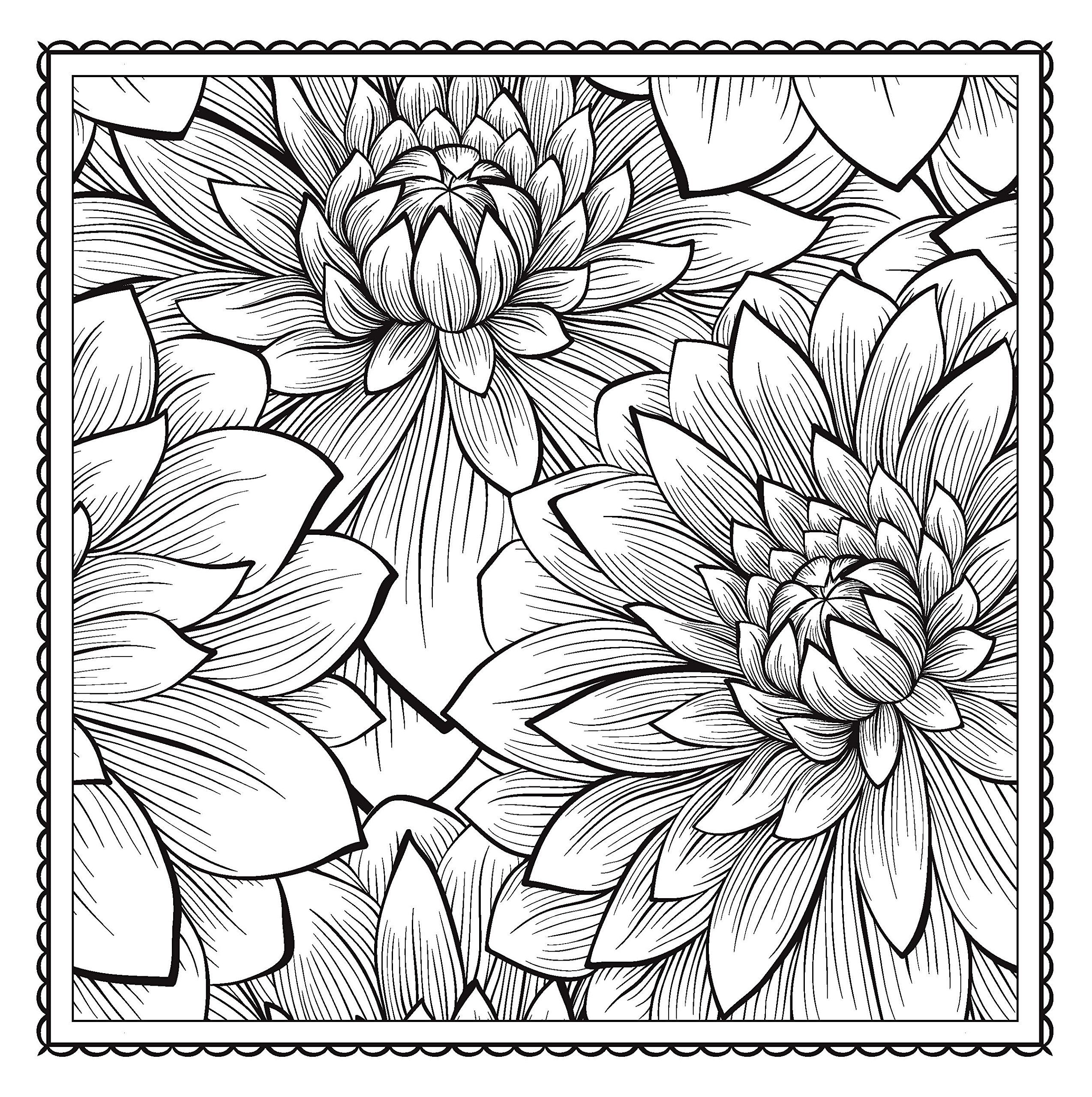 2548x2560 Blossom Magic Beautiful Floral Patterns Coloring Book For Adults