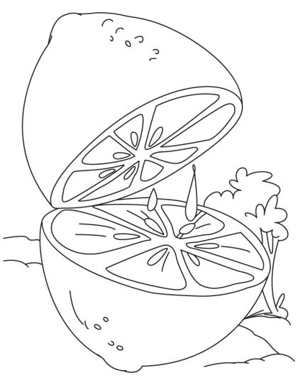 420x542 Lime Coloring Page Download Free Lime Coloring Page For Kids