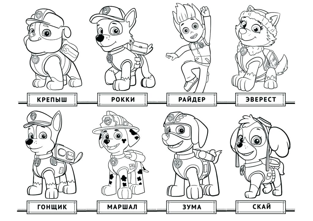 1024x724 Paw Patrol Coloring Pictures Plus Paw Patrol Coloring Pages Rubble