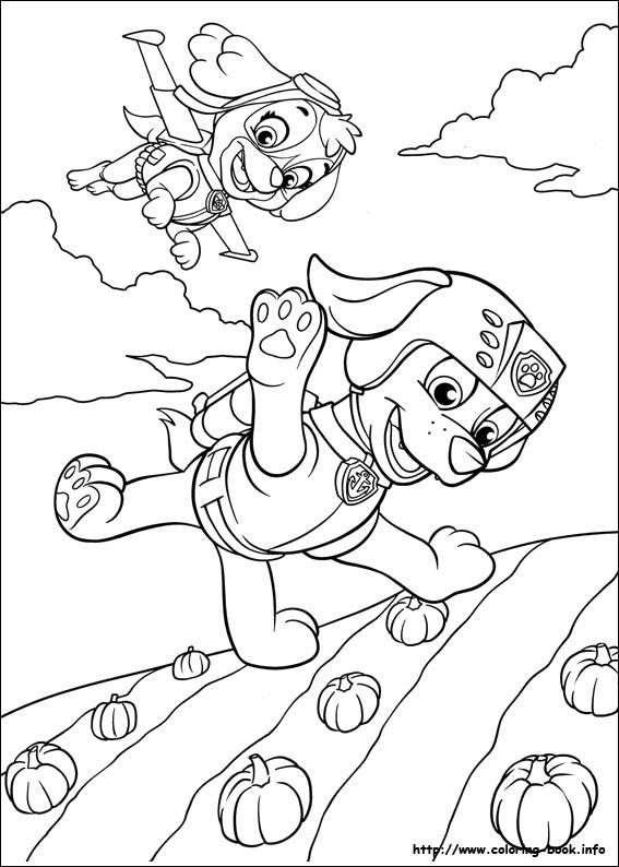 567x794 Paw Patrol Coloring Picture Colouring