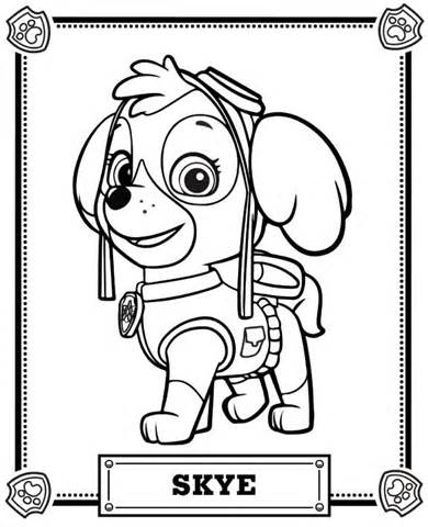 390x480 Skye Paw Patrol Badge Coloring Coloring Pages Coloring Pages