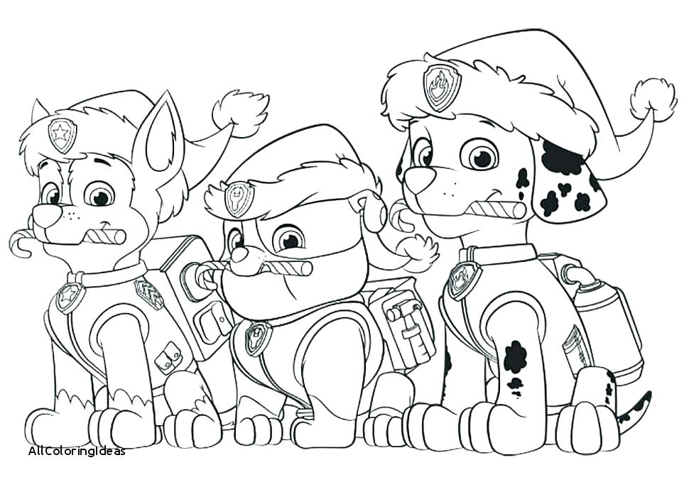 34 Paw Patrol Birthday Coloring Pages - Free Printable Coloring Pages