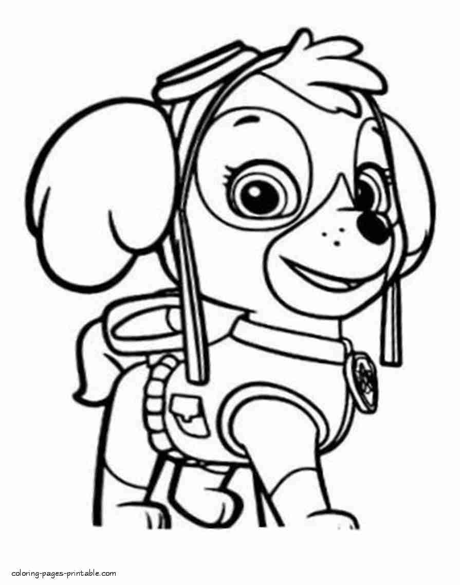 paw patrol coloring pages for at getdrawings free