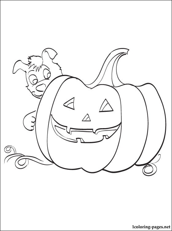 560x750 A Big Pumpkin With A Puppy Coloring Page For Halloween