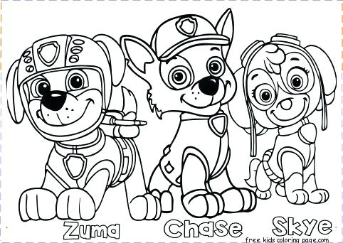 482x342 Color Pages For Free Free Paw Patrol Printable Coloring Pages Paw