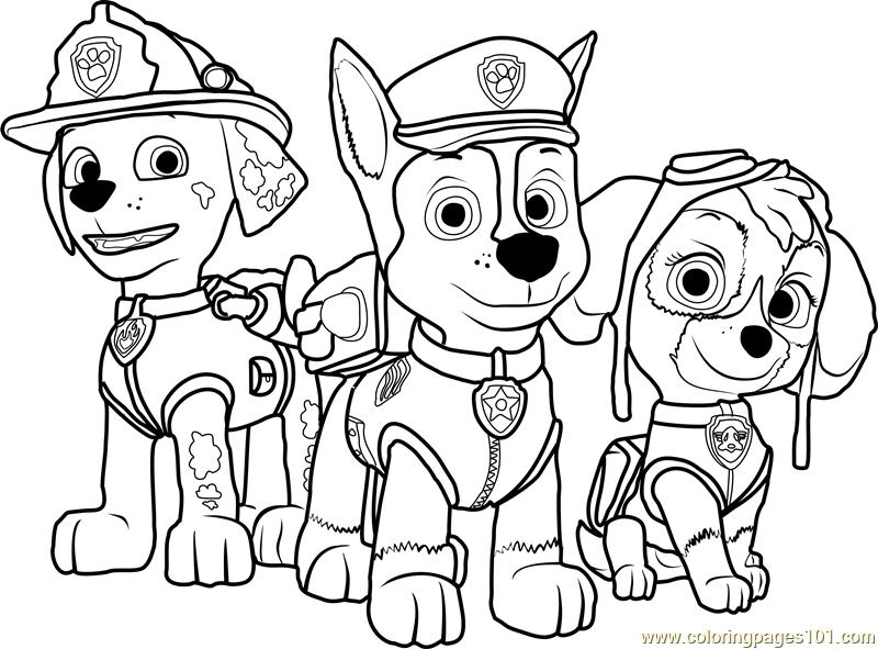 800x591 Paw Patrol Coloring Page