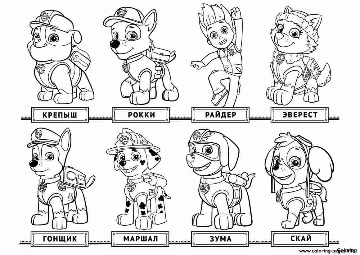1160x820 Paw Patrol Coloring Pages Dotcon Me Best Cartoon Character Free