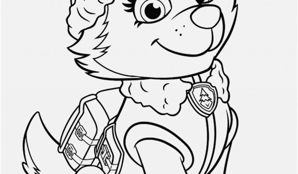 Paw Patrol Zuma Clipart At Getdrawings Com Free For Personal Use