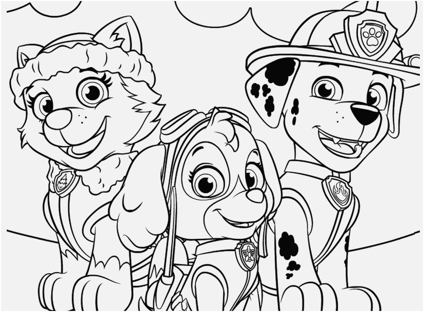 Paw Patrol Everest Coloring Page At Getdrawingscom Free For