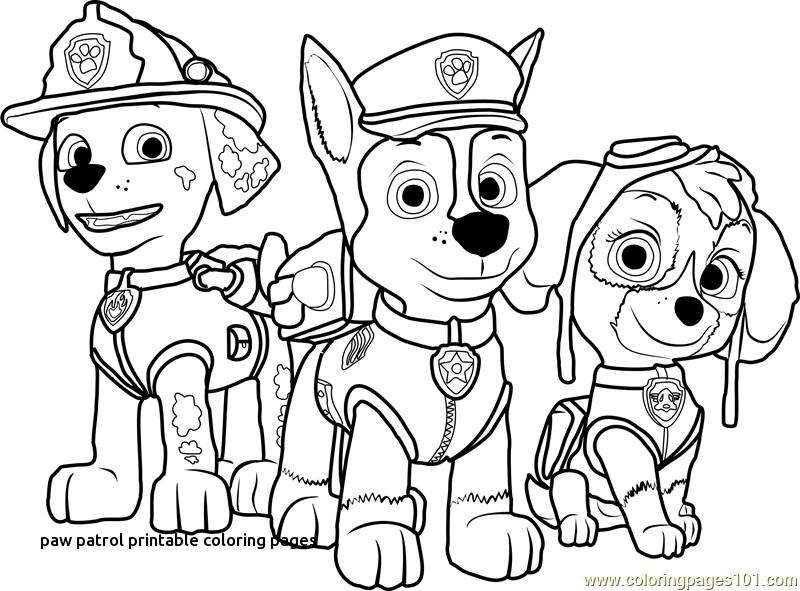 Paw Patrol Free Printable Coloring Pages At Getdrawings Free Download