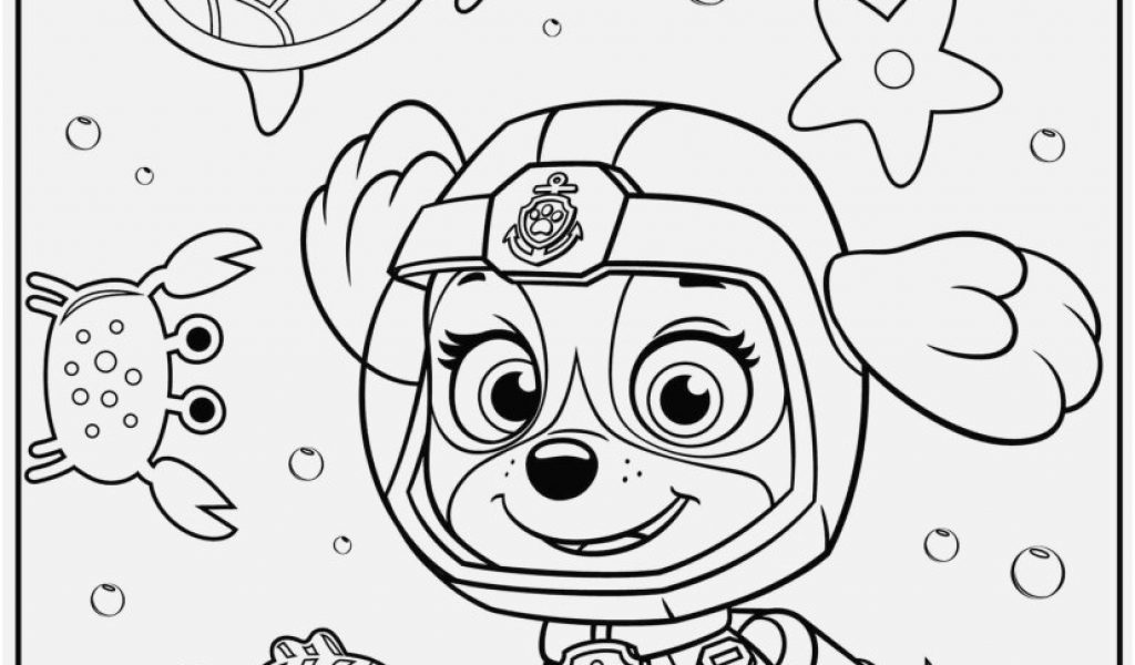 1024x600 Skylanders Blackout Coloring Pages Pics Paw Patrol Tracker