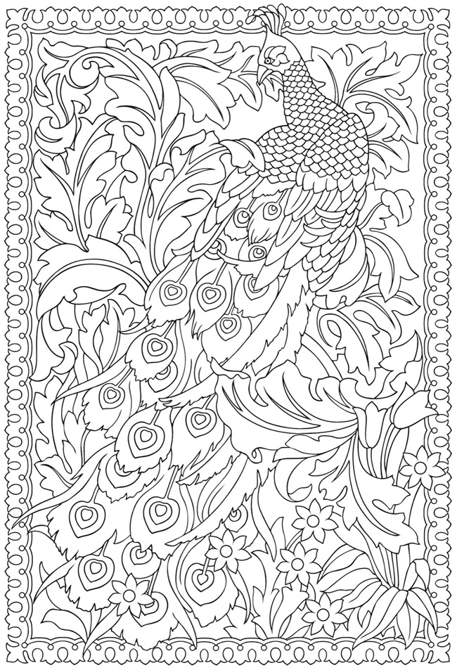650x953 Peacock Coloring Pages For Adults Educational Coloring Pages