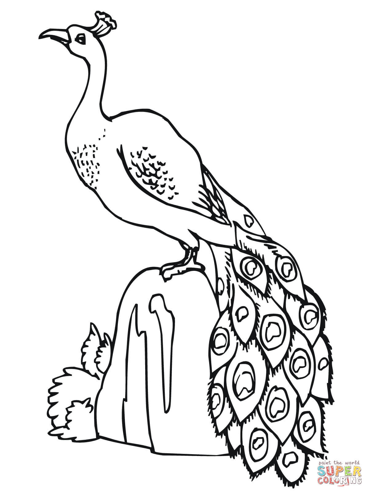 1200x1600 Peacock Standing On Stone Coloring Page To Pictures Of Peacocks