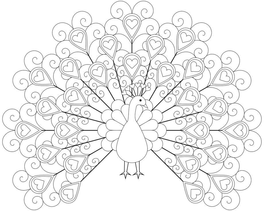 920x736 Peacock Coloring Pages With Love Feathers